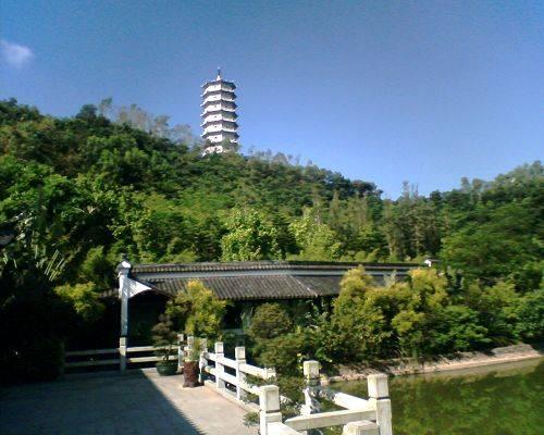 深圳園博園怎麼去